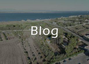 carignano-del-sulcis-blog